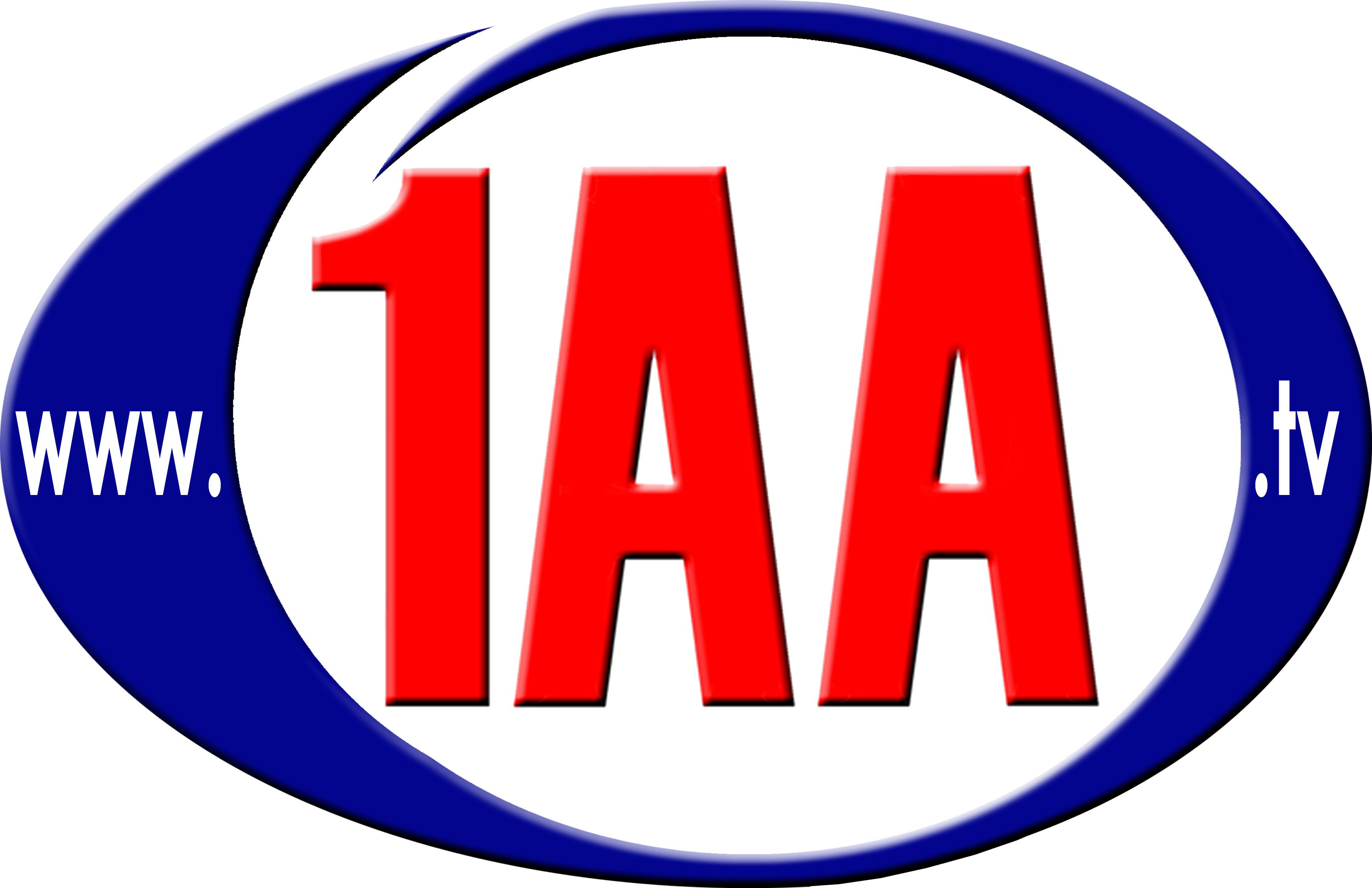 1AA Project Management & New Media e.U