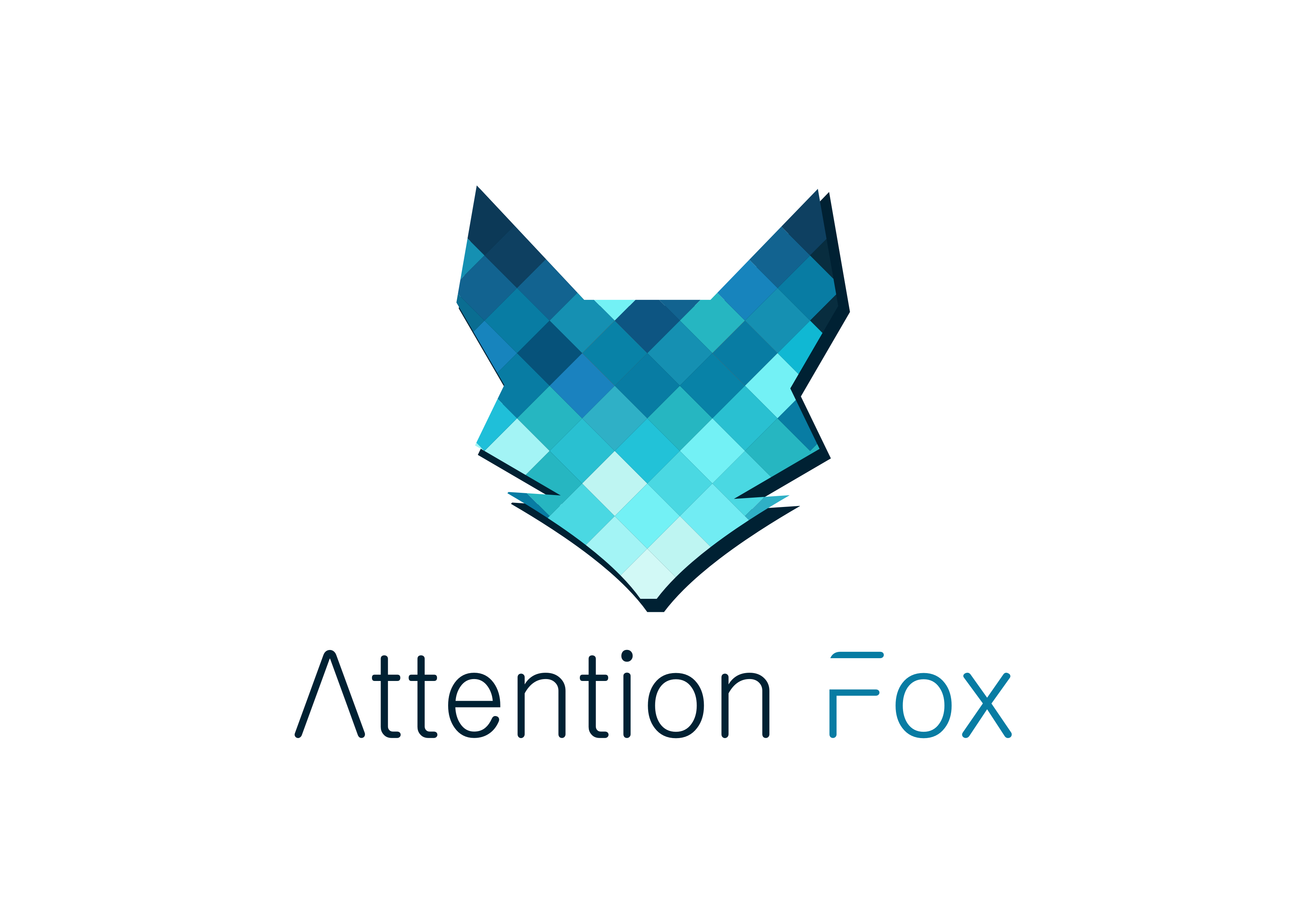 Attention Fox KG